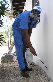 Pest Control Poplar, 11b Churchill Place, Poplar, E14 5RB, 02036160403, pestcontrolpoplar.org