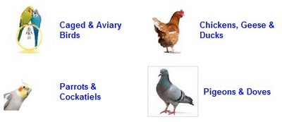 PET BIRDS & LIVESTOCK