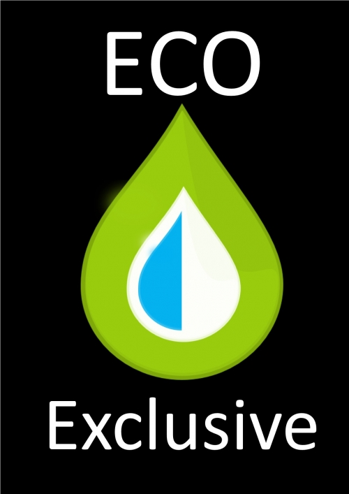 The Eco Exclusive Car Valet