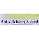 Ant's Driving School