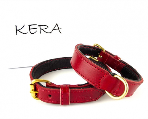 Luxury Red Leather Dog Collar
