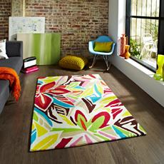 Multicoloured Rugs