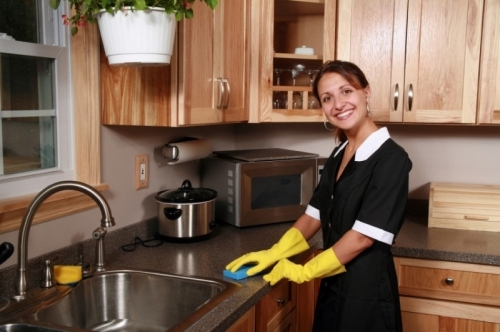 Domestic Cleaning Cleaners