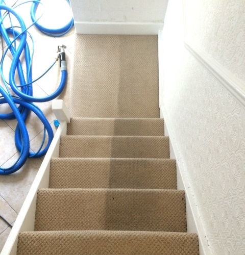 Dirty Beige Stairs Carpet In Process Of Cleaning Huge Differance
