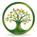 Impact Foods - Superfood Wholesaler