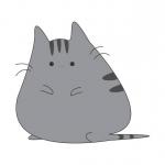 Fat Grey Cat Tours Ltd